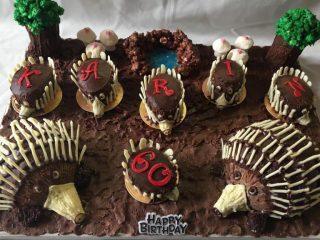 Echidna Theme Birthday Cake